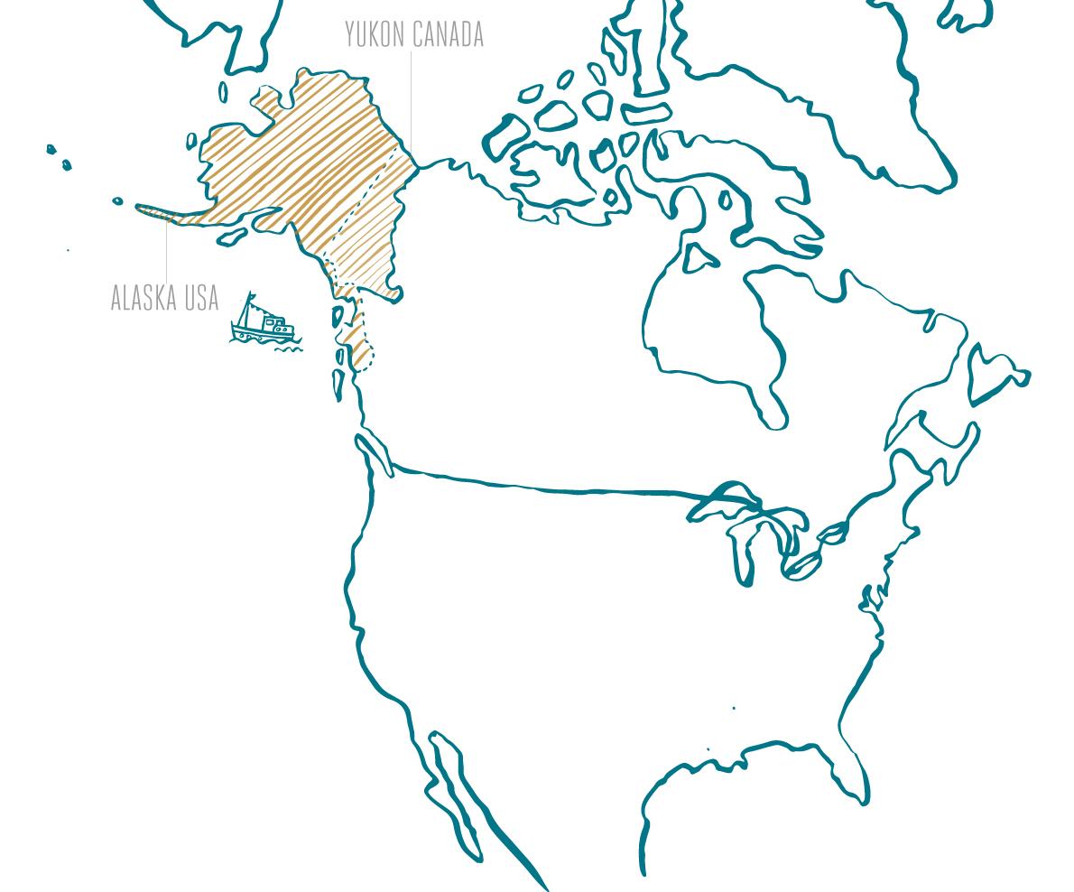 Wild Alaska Home