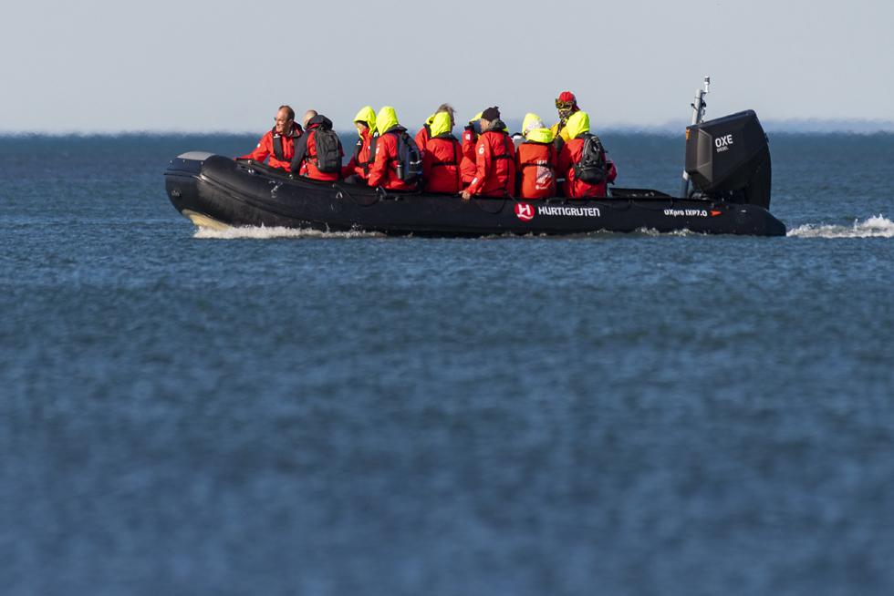 Tenderboat Cruising King S Point