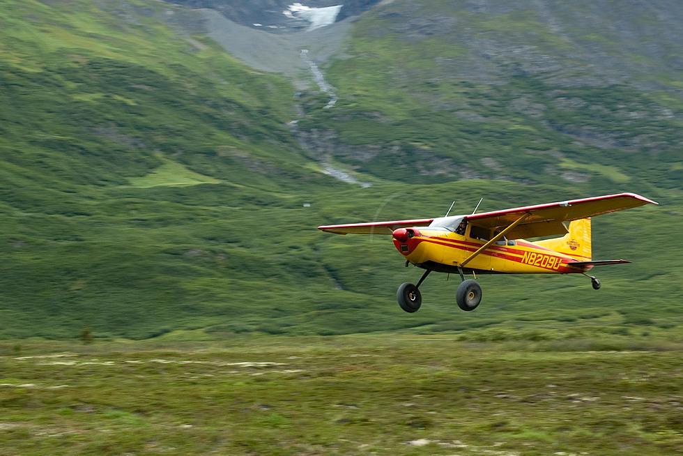 Bushplane 2
