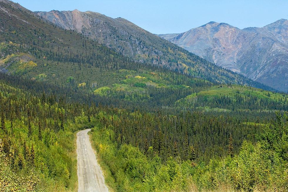 Mc Carthy Road