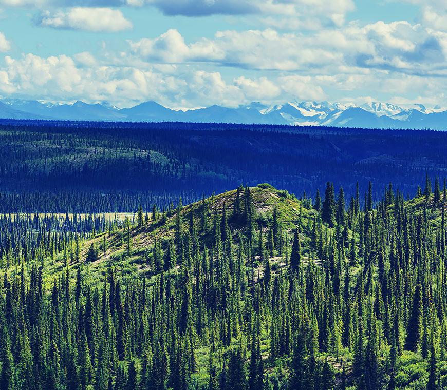 Wandelen Alaska 3